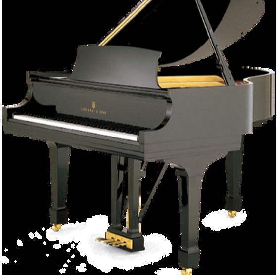 Dr.Keys Piano Tuning Service