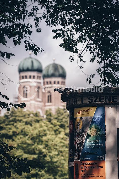 Taube mit Frauenkirche (#8887)