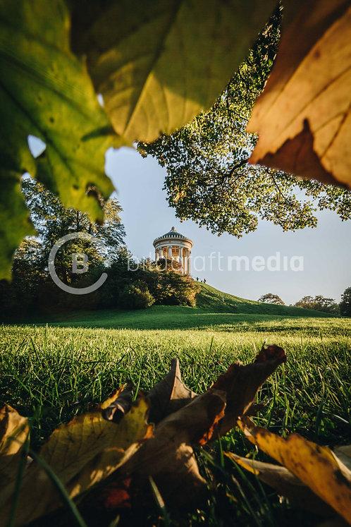 Monopteros / Englischer Garten im Herbst (#9957)