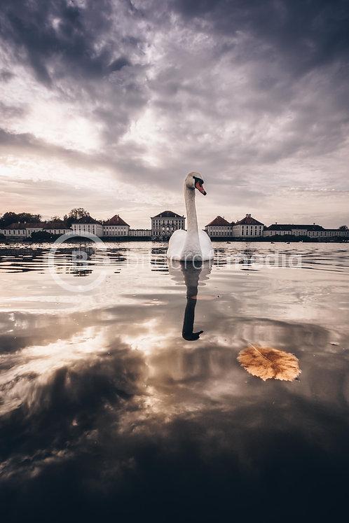 Aussteller: Nymphenburg / Schwan (#5738)