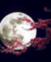 """alt=""""les effets de la lune"""""""