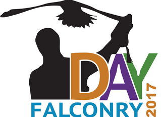 World Falconry Day