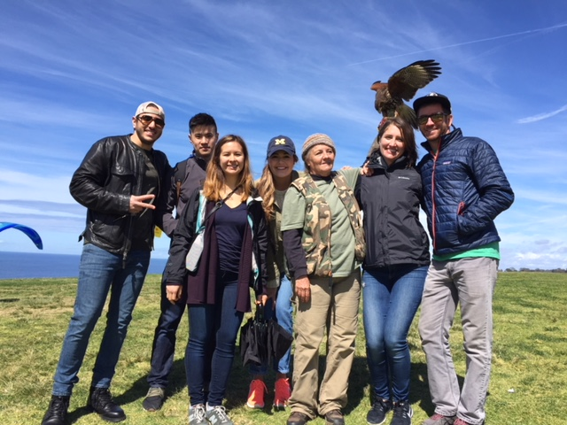 Introduction to Falconry Class