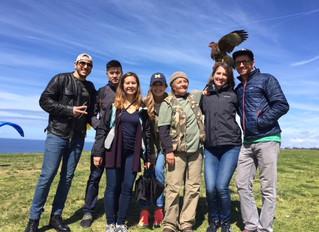 Falconry Classes Spring Forward