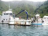 Mussel Farm Boat