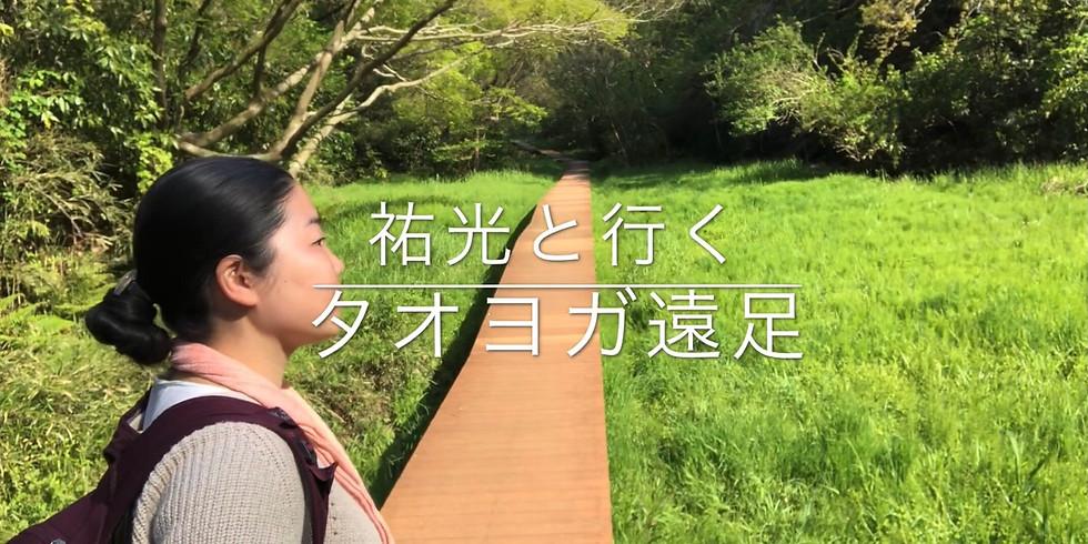 タオヨガ遠足@広町緑地