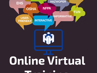 Online Virtual Training