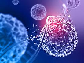 stem-cell-skincare-260925020-3.jpg