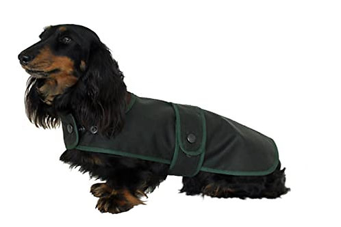 Dachshund Hunter Coat
