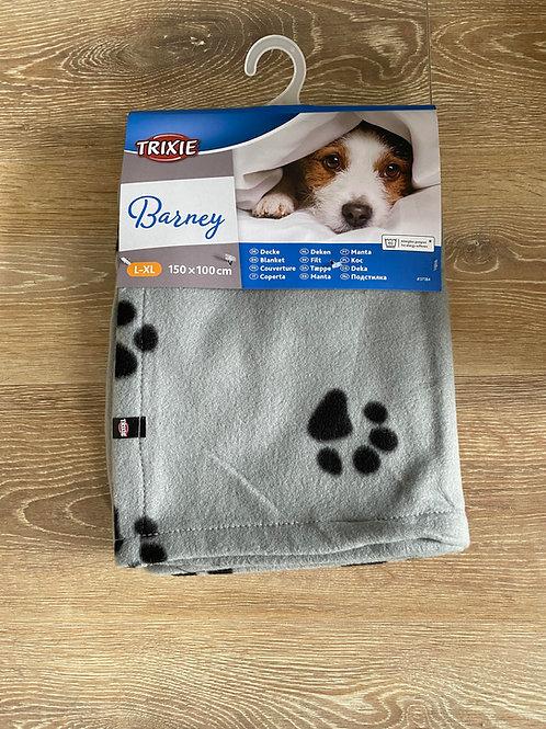 Barney Blanket