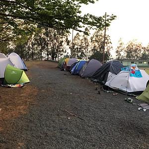 1 Acampa Thelmo