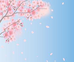 spring-background-4035402_1920.jpg