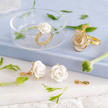 White Cloud collection
