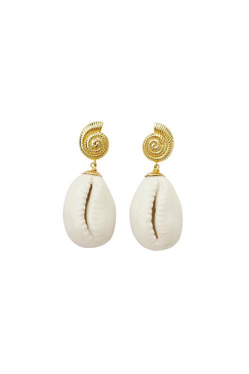 Porcelain Cowrie Shell Teardrop Earrings