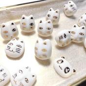 Lucky kittens are ready ! 😻😸😺😹😻😼😽😾// 23 Jan 2018