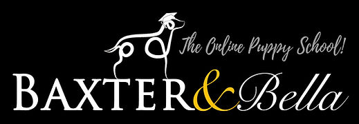 PARTNERS B&B Logo BLACK Background.jpg