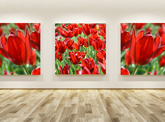 Large Triple Canvas with Red Wave settin