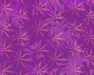 Wild Pink 10 x 8 for web.jpg