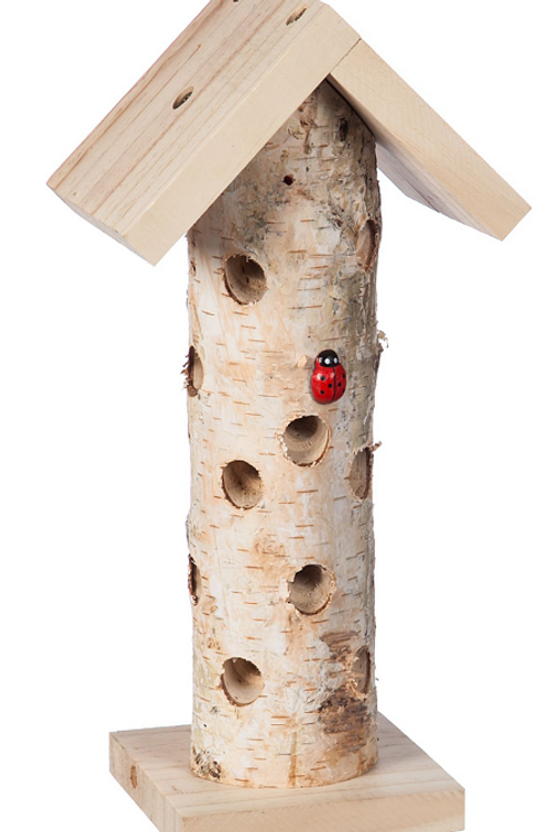 Ladybug Habitat
