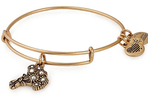Alex and Ani - I Pick You