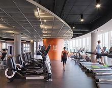 Fitness Equipment Sales
