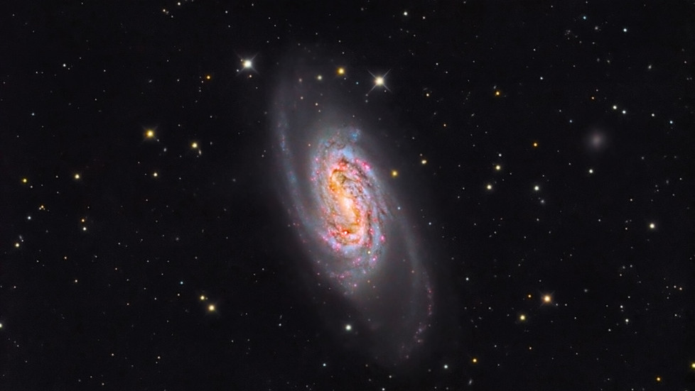 NGC 2903 in Leo