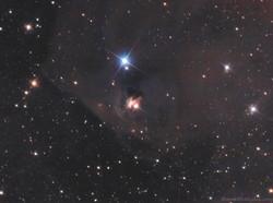 NGC1555 in Taurus