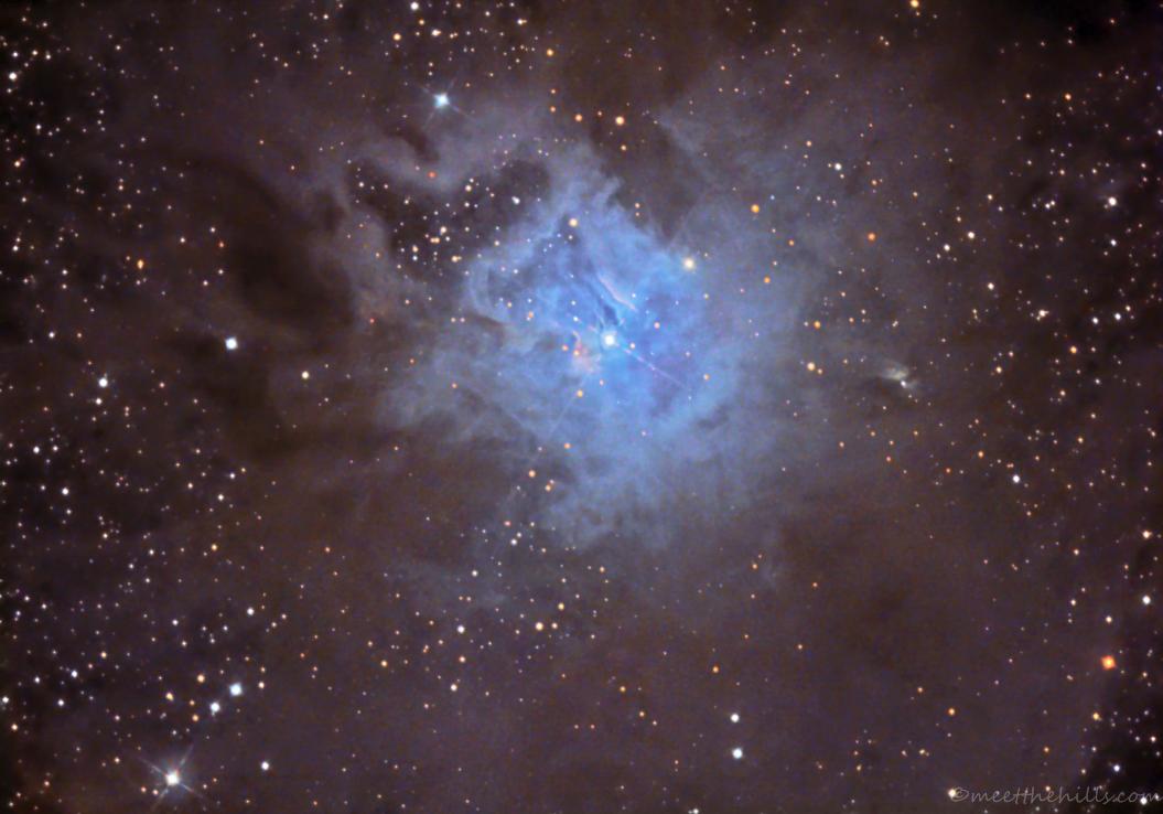 NGC7023 - Iris nebula