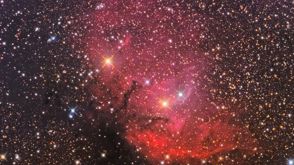 SH-101 (Tulip nebula)
