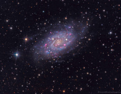 NGC 2403 - Galaxy in Cam