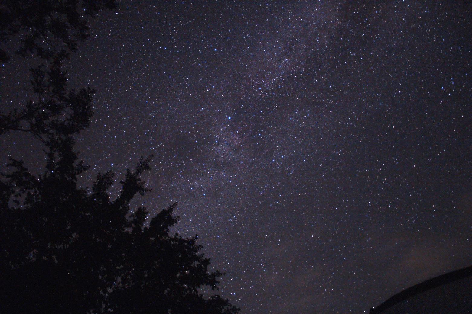 Milkyway in Cygnus