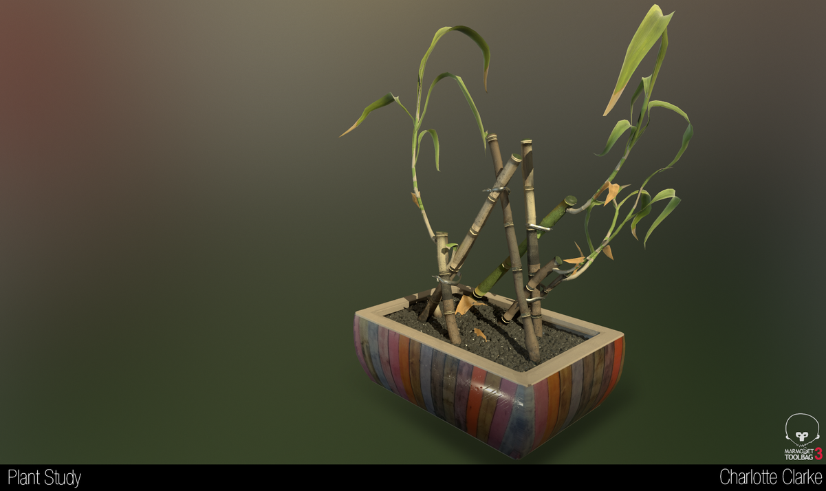 Plant_Study_Render.png