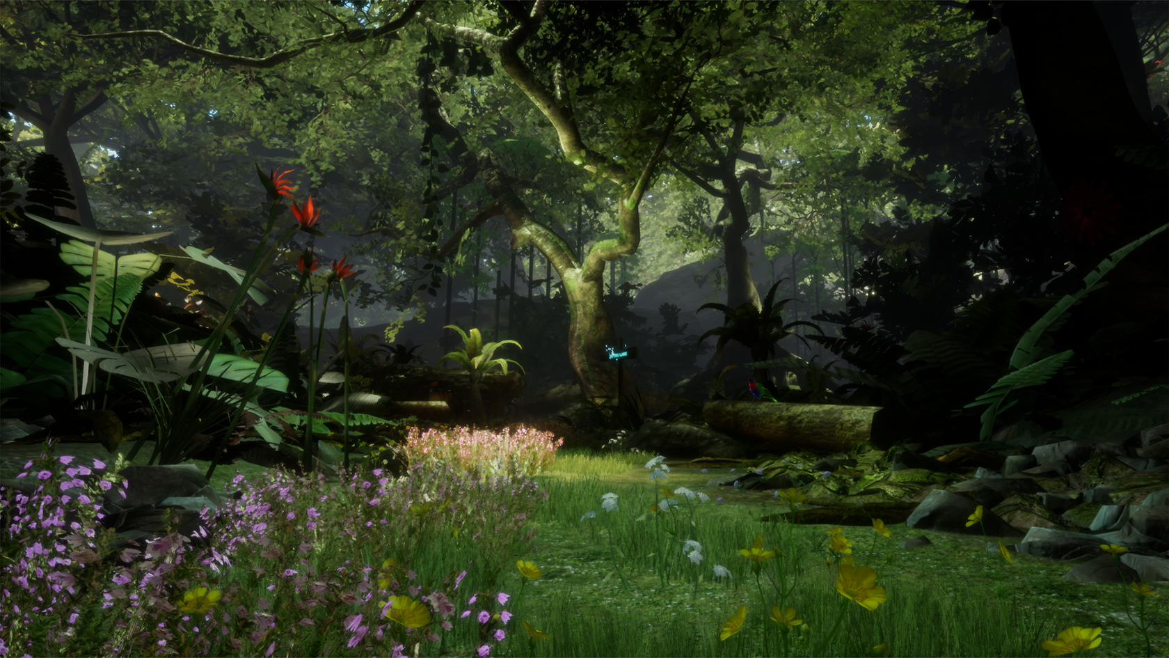 Forest_Of_Serenity_1 (1).png