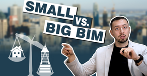 Does the size (of BIM) matter?