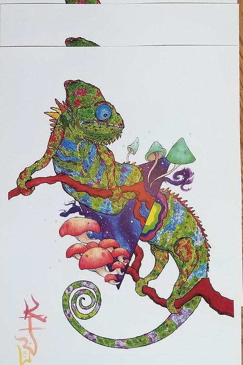 Dimension Print