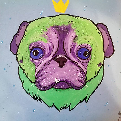 Cosmo the Pug