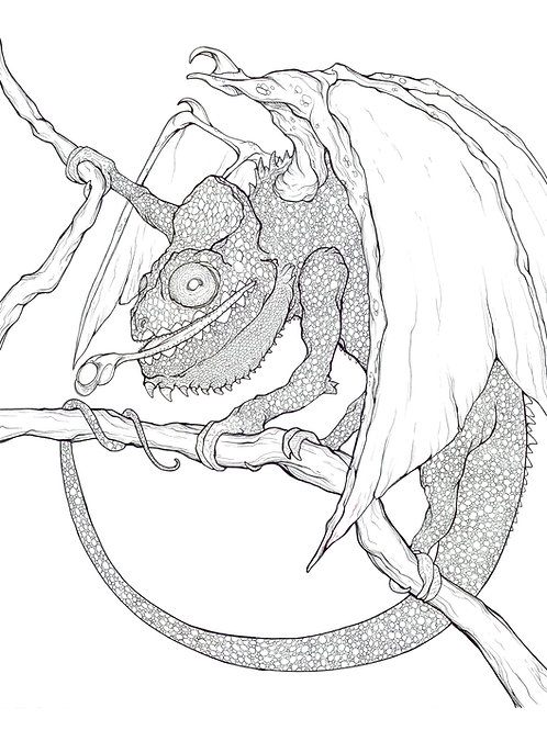 Bat Lizard Coloring Page