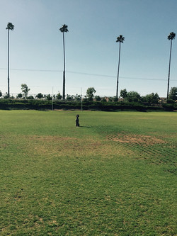 Tucker at park