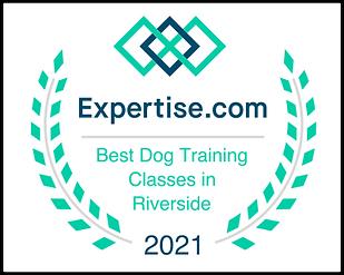 Expertise Award Badge Training.png