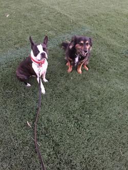 Harley and Jake