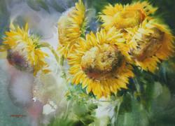 010, 박철환, Sunflower, 53.0 x 72