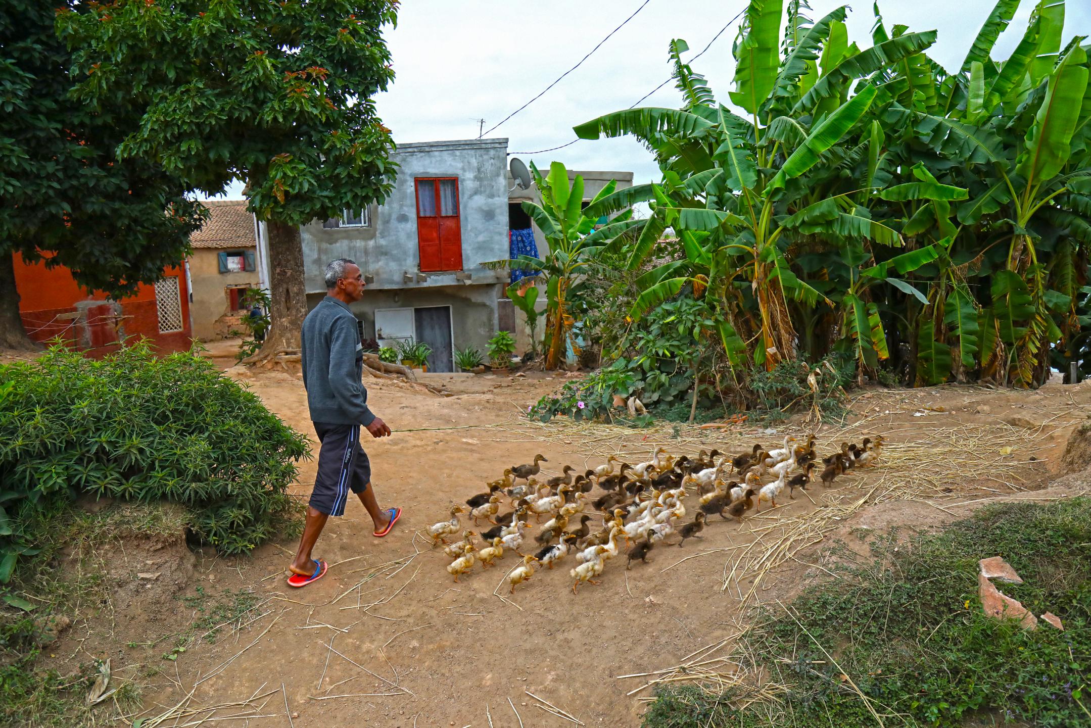 풍경_오리카우보이, 안타나나리보_마다가스카르, 30.5 x 45