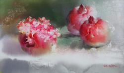 002, 박철환, Pomegranate, 27.3 x 45