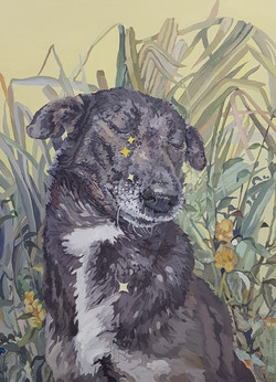 015, 박계숙, 나르시스의 정원-5, 72 x 53 cm, 아크릴에 캔