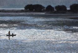 우포늪이야기-흐르는시간 97x162.2cm oil on canvas 2016 2000만원 (7)