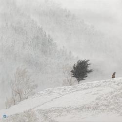 014, 임태규, 흐린풍경-엄동, 60 x 60 cm, 한지 위에 백토