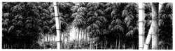 017, 안충기, 대숲에 이는 바람, 59.0 x 16