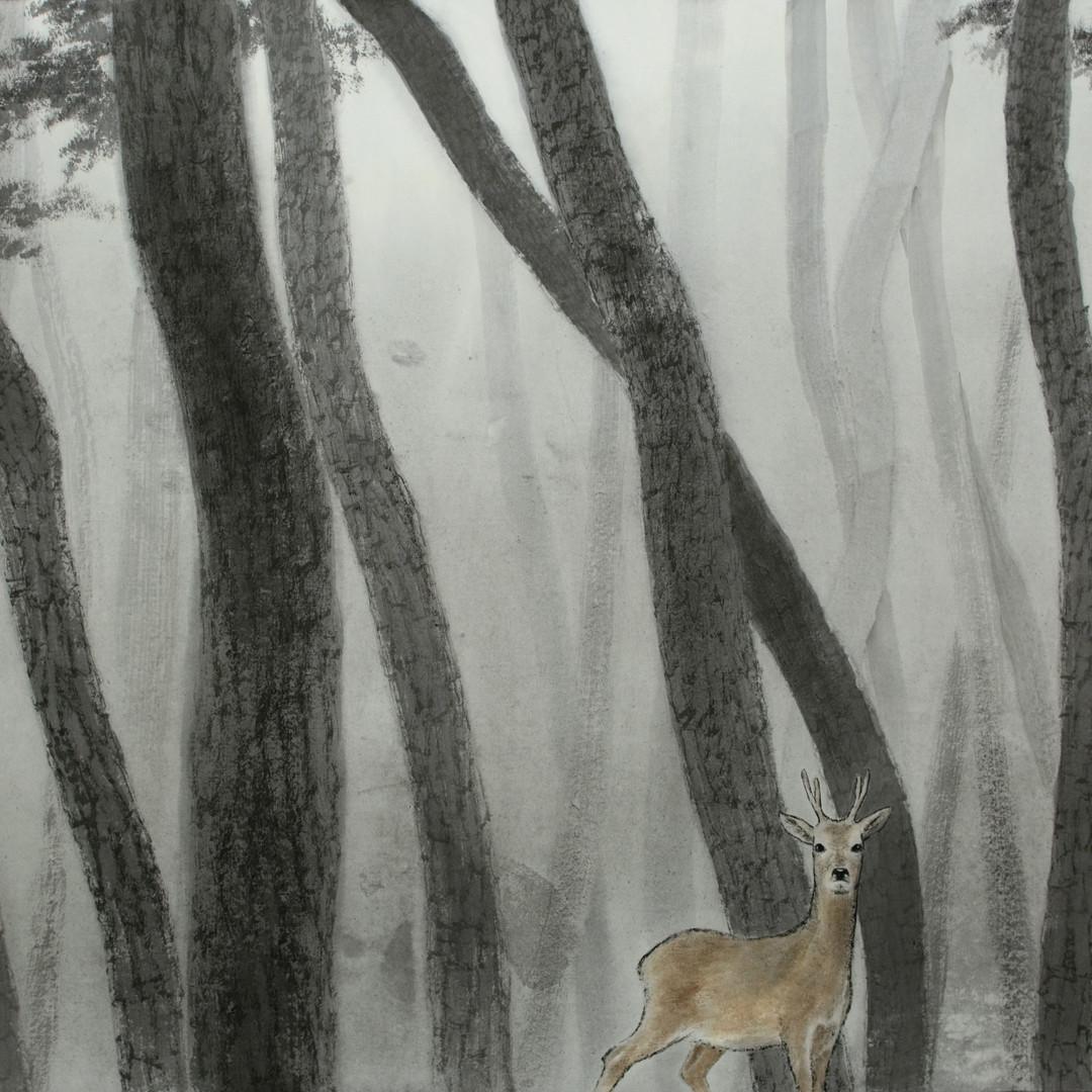 008, 사려니 숲에서, 50 x 73 cm, 종이에 먹 토분, 2019