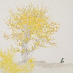 012, 임태규, 흐린풍경-봄, 80 x 80 cm, 한지 위에 백토 수