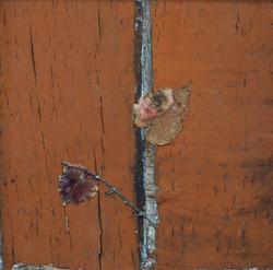 이부강4-3, trace wall, 20 x 20 cm, Mixed me